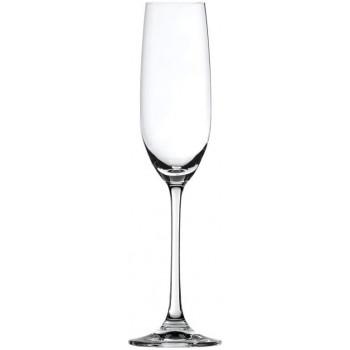 Bicchieri Salute Flute...